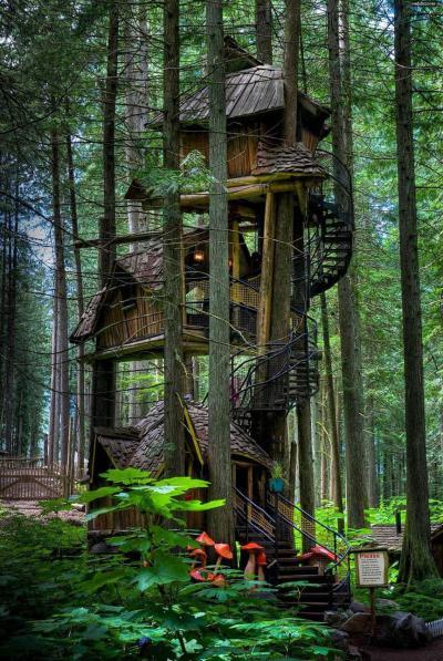 Casette su tre piani sui pini - Canada