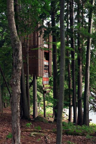 Casetta sull'albero in perlinato - Muskoka, Canada
