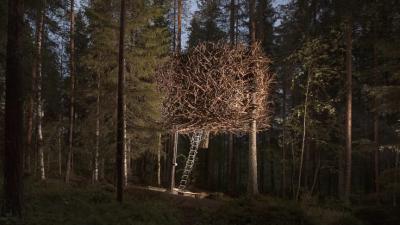 Casetta a nido d'uccelli - Svezia