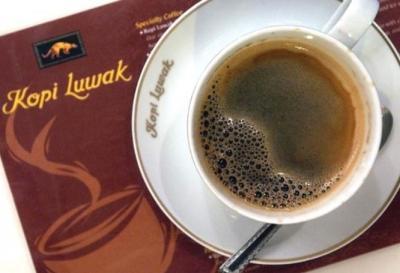 Il Kopi Luwak è un tipo di caffè prodotto con le bacche, ingerite, parzialmente digerite e defecate dallo zibetto comune delle palme - 39euro (tazzina espresso).
